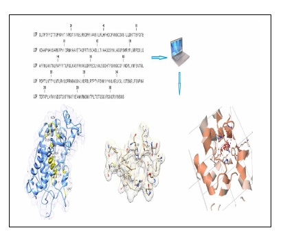 In Silico Analysis of Primary Sequence and Tertiary Structure of Lepidium Draba Peroxidase